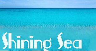 Shining Sea - Note Single Ply