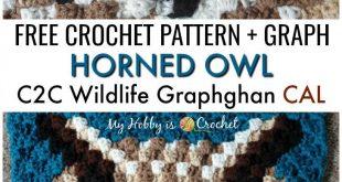 Horned Owl C2C Square - Free Crochet Pattern + Graph